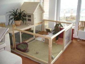 Pet Rabbit Houseing
